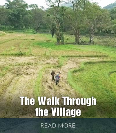 The-walk-through-the-village